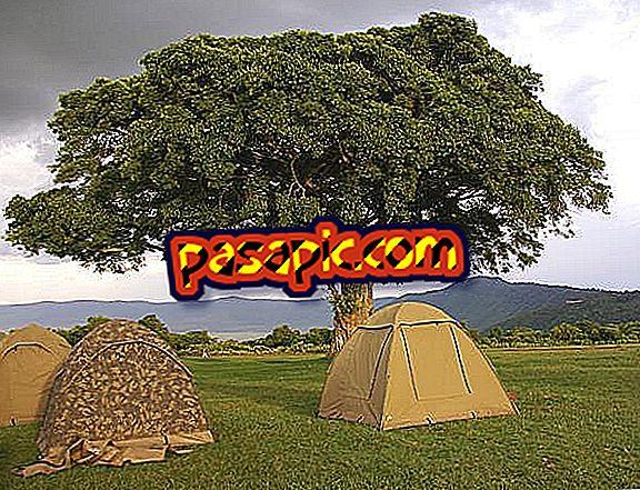 Miten valita hyvä leirintäalue - virkistystoimintaa
