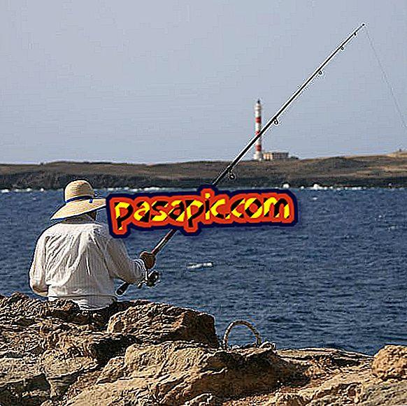 Kuinka valita paikka kalastaa - virkistystoimintaa