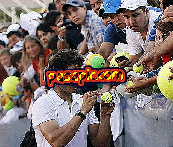 How to get the autograph of Rafa Nadal - hobbies and science