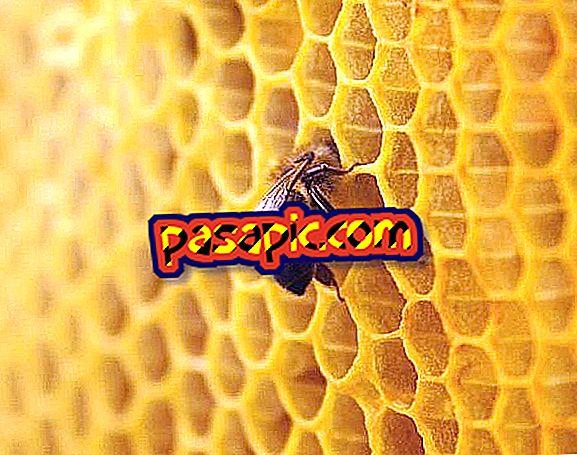 รักษาผิวด้วยขี้ผึ้ง