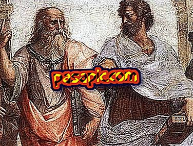 What is the origin of Philosophy - university careers