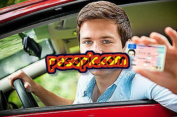 Ką daryti, jei praradau vairuotojo pažymėjimą
