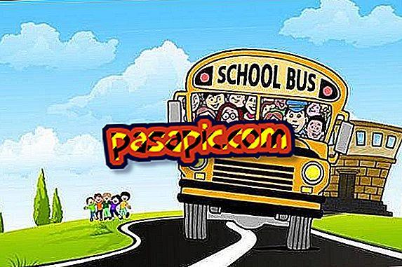 Aké sú pravidlá pre školskú dopravu