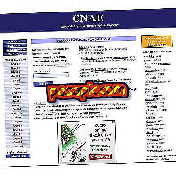 Come conoscere il codice CNAE di un'azienda