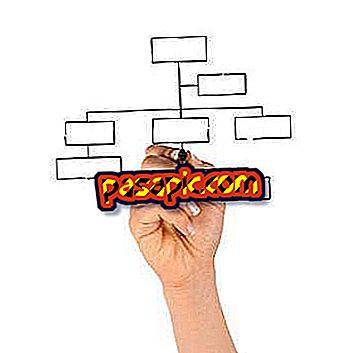كيفية عمل الهيكل التنظيمي للشركة