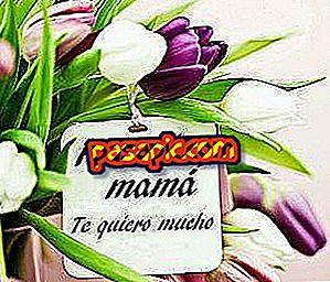Cara mengucapkan selamat Hari Ibu