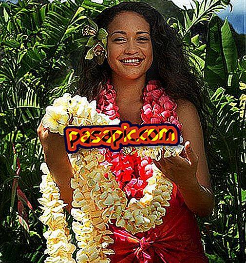 Ako urobiť havajský kostým