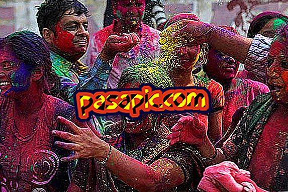 Wie das Fest der Farben in Indien gefeiert wird