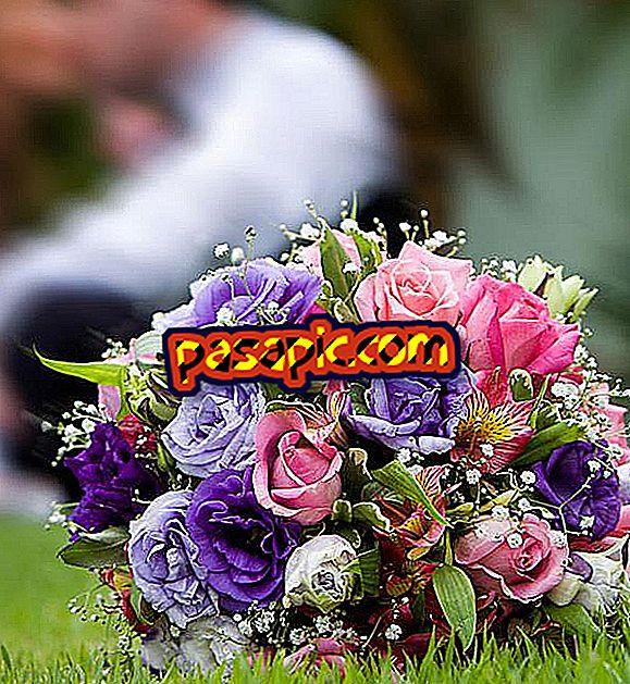 Come celebrare matrimoni in perle - feste e celebrazioni
