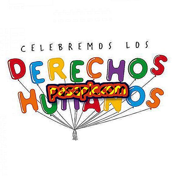 Comment est célébrée la Journée internationale des droits de l'homme