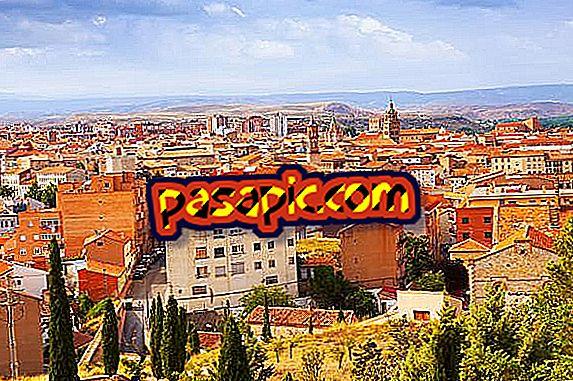 Mis on Terueli nimi