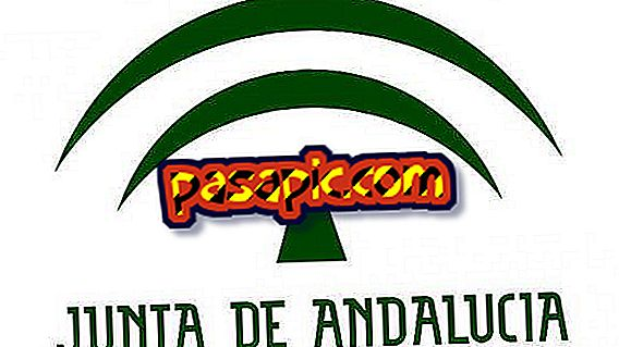 Paid courses for unemployed of the Junta de Andalucía