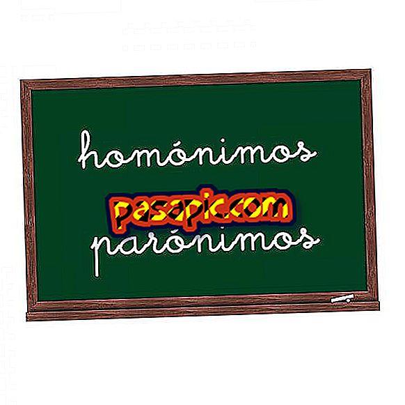 Razlika med homonimi in paronimi