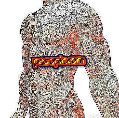 Kaip studijuoti anatomiją