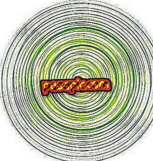 Hvordan beregne ligningen i en sirkel