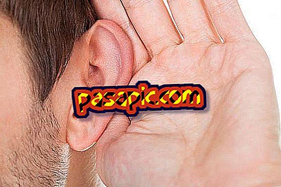 Come imparare ad ascoltare - formazione
