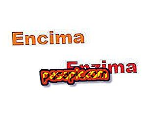 Was ist der Unterschied zwischen Enzym und Enzym