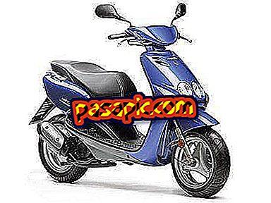 Kako izbrati motocikel Scooter - motorna kolesa