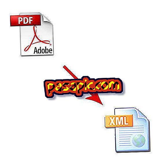Come convertire i file PDF in XML - software