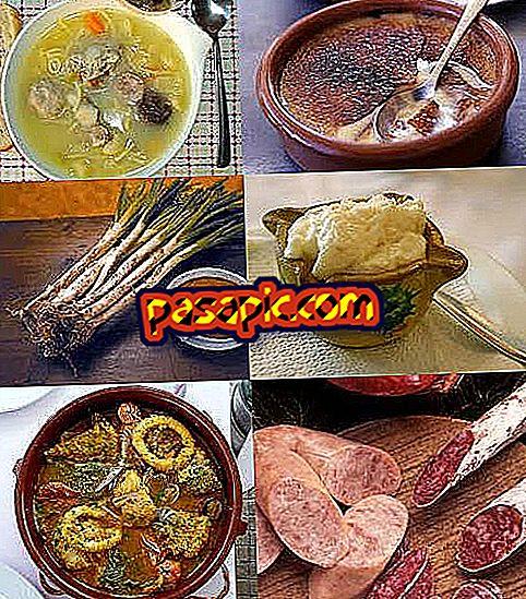 สิ่งที่กินในคาตาโลเนีย