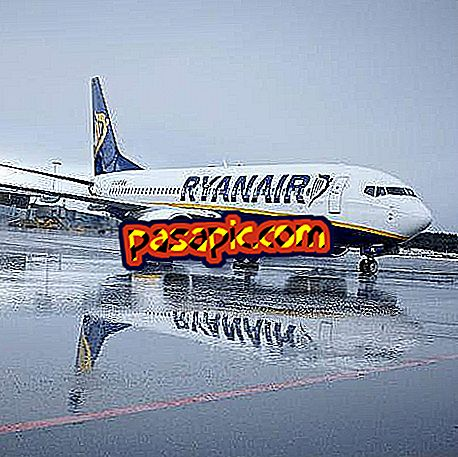 How many bags does Ryanair allow?