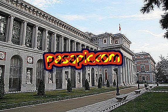 Quali musei visitare a Madrid